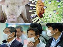 ไข้หวัดหมู หรือ ไข้หวัดใหญ่เม็กซิโก โรคระบาด วิกฤตคนกับเชื้อโรค