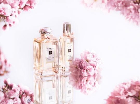 โจ มาโลน Limited Edition Sakura Cherry Blossom