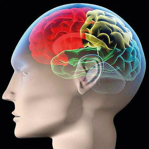 ออกกำลัง สมอง เพิ่ม คุณภาพ ให้ชีวิต