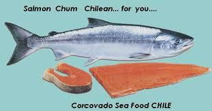 สารพันคุณประโยชน์จาก รกปลาแซลมอน