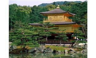 Kyoto Love Walk