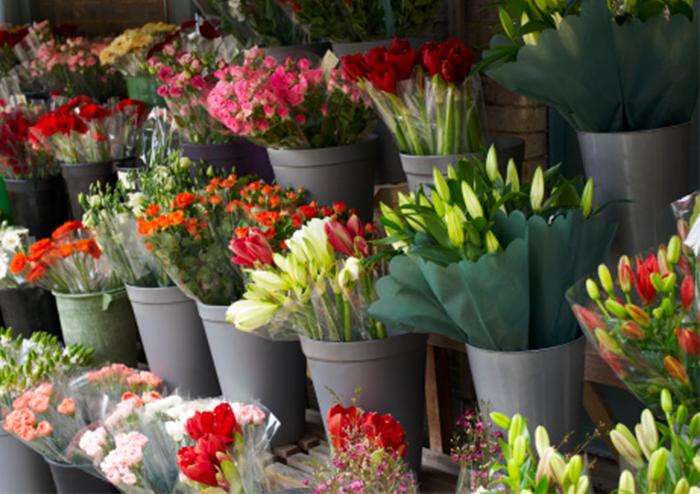 ความหมายของดอกไม้ในวันวาเลนไทน์