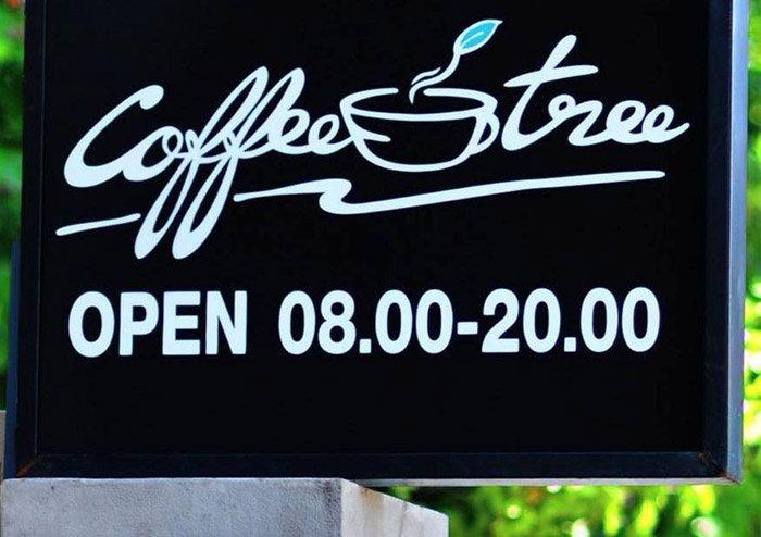 ชวนจิบกาแฟในสวนกับ Coffee Tree