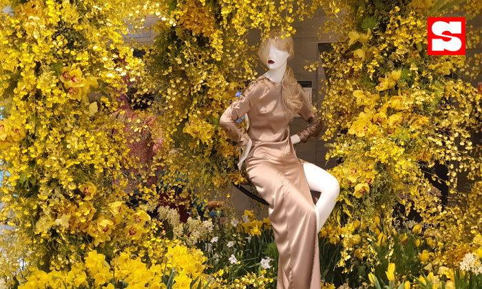 ตระการตาดอกไม้บานสะพรั่งกลางกรุง พร้อมช้อป ชิม เช็กอิน ถ่ายรูปเก๋ๆ