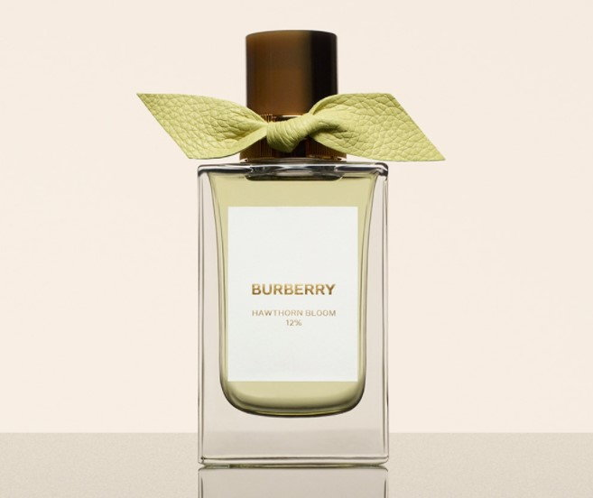 Burberry Signature Hawthorn Bloom