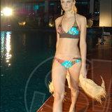 Thaitanium & Talkie Gang Pool Party