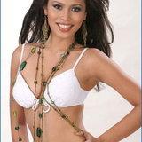 ผู้เข้าประกวด Miss World 2006 - Asia Pacific