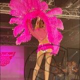 Sexy Flamingo in Paradise
