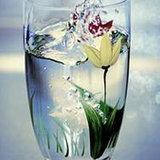 น้ำประปาดื่มได้ไม่ต้องต้ม
