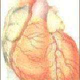 รู้ทันโรคหัวใจ