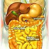 มะเร็งลำไส้ใหญ่