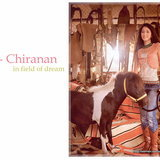 Yui Chiranan in field of dream