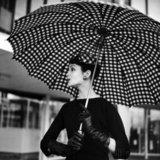 แฟชั่นร่ม