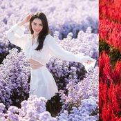 ถ่ายรูปในสวนดอกไม้