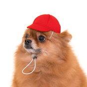 กาชาปองหมวกน้องหมา ป.1 สุดน่ารัก