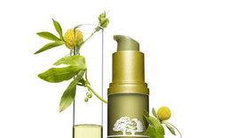 Plantscription™ Anti-aging serum ใหม่ล่าสุดจากออริจินส์